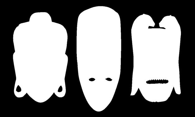 Identity: The white mask
